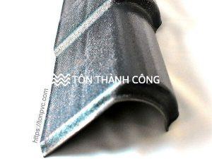 Read more about the article Tấm viền mái trái – phụ kiện ngói nhựa ASA/PVC 04 lớp